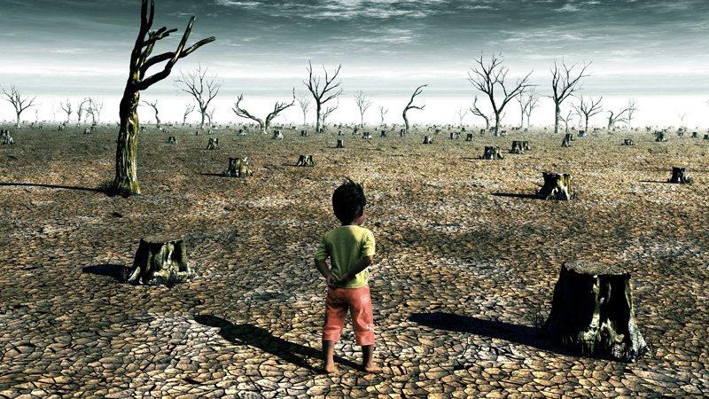 Hava Kirliliğinin Çevre ve İnsan Sağlığına Etkileri